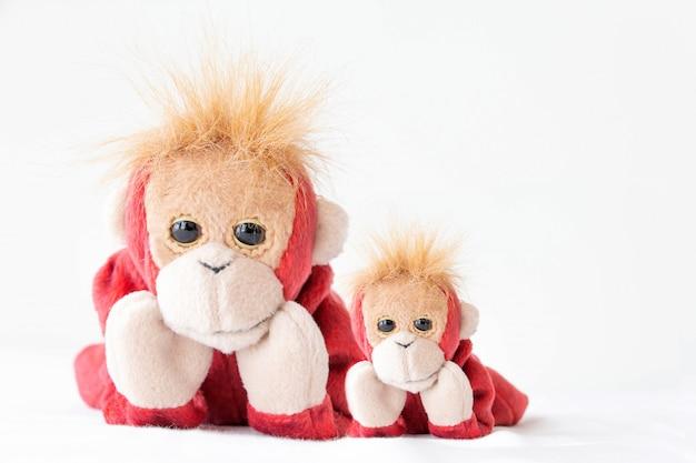 Un couple de singes mignons