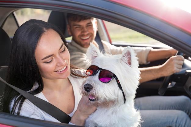 Couple de smiley à angle élevé avec chien mignon