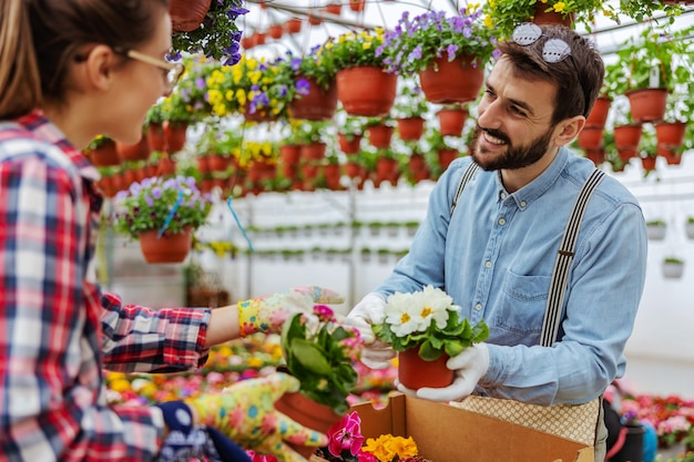 Couple souriant debout dans la serre et prendre des fleurs dans des boîtes.