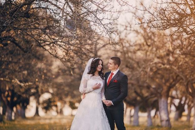 Couple sous un arbre sans feuilles