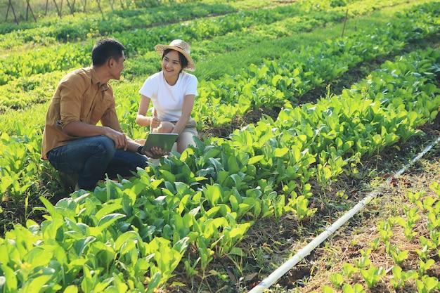 Les couples regardent avec plaisir les parcelles de légumes biologiques.