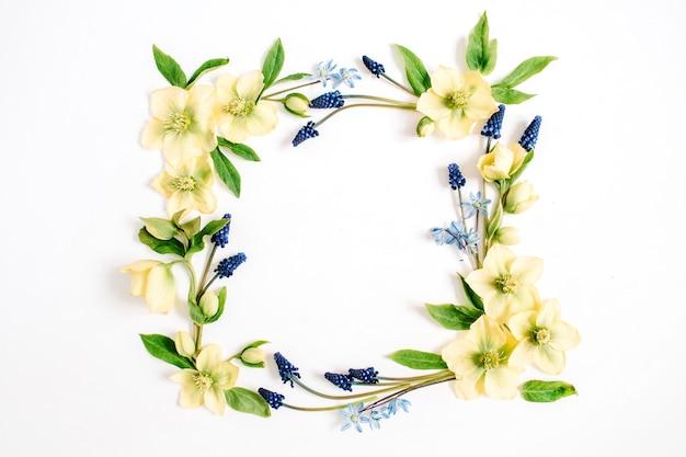 Couronne de cadre faite de fleur d'hellébore, de fleur de muscari et de feuille sur fond blanc. mise à plat, vue de dessus