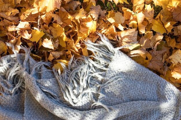 Couverture grise vue de dessus sur les feuilles