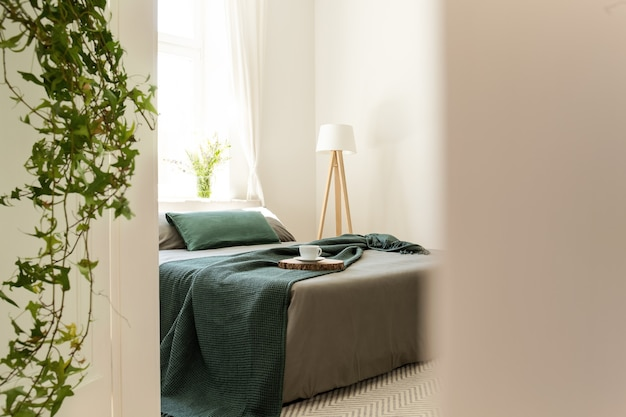 Couverture verte et oreillers sur lit gris dans un intérieur minimaliste avec lampe et plantes. vrai photo