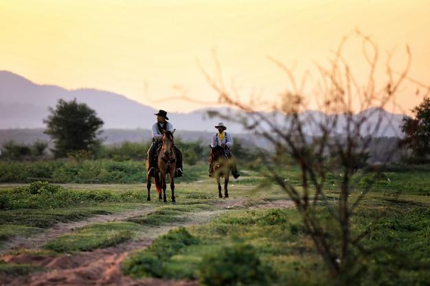 Cow-boy à cheval dans le champ contre le coucher de soleil
