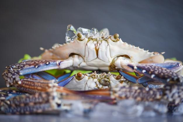 Crabe cru sur glace avec sur dark