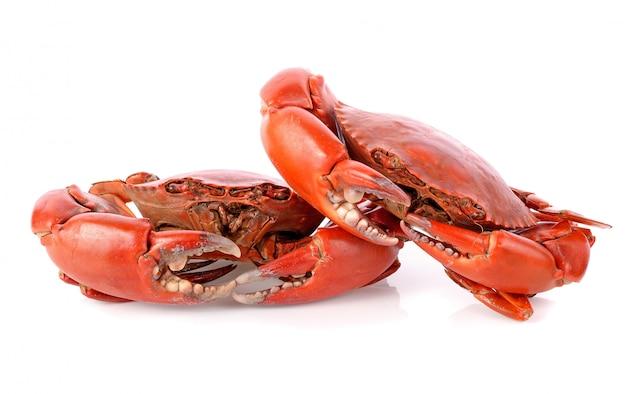 Crabe cuit à la vapeur isolé sur fond blanc
