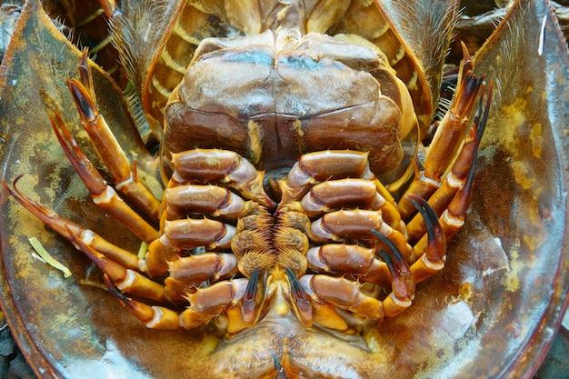 Crabe fer à cheval brûlé pour la cuisson de près