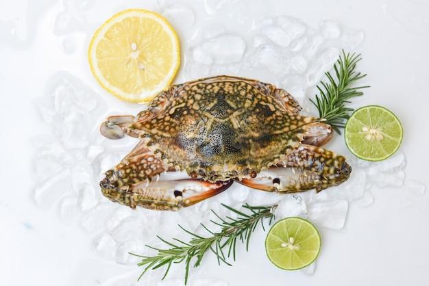 Crabe frais sur glace avec tranches d'agrumes et romarin