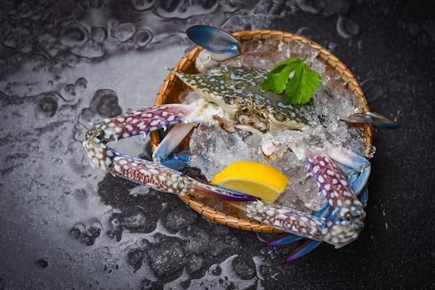 Crabe de fruits de mer sur la glace - crabe de natation bleu cru frais océan gourmet avec de la glace sur fond sombre dans le restaurant
