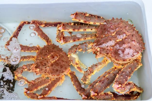 Crabe royal frais dans l'eau au marché aux poissons