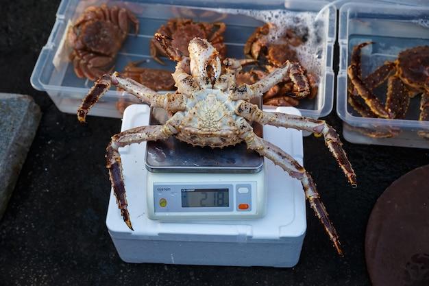 Crabe royal rouge frais sur une échelle sur le marché.