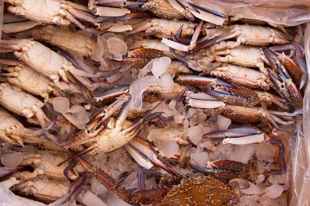 Crabes sur comptoir du marché