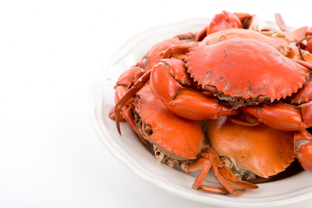 Crabes cuits à la vapeur sur la plaque blanche