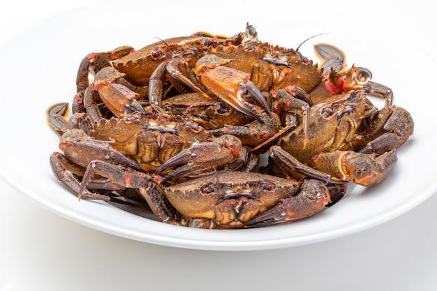 Crabes frais et vivants.