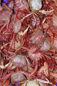 Crabes des prises de la mer méditerranée