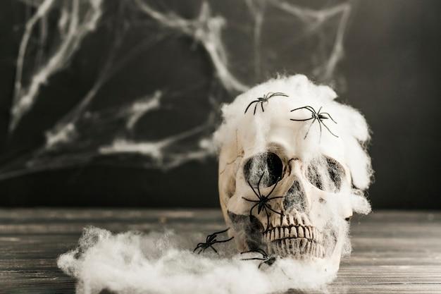 Crâne avec des araignées dans une toile plastique