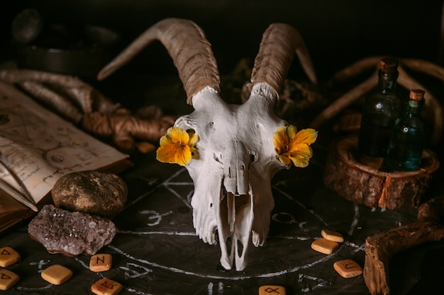 Crâne de chèvre blanc avec des cornes, vieux livre ouvert avec des sorts magiques, des runes, des bougies et des herbes sur la table de la sorcière.