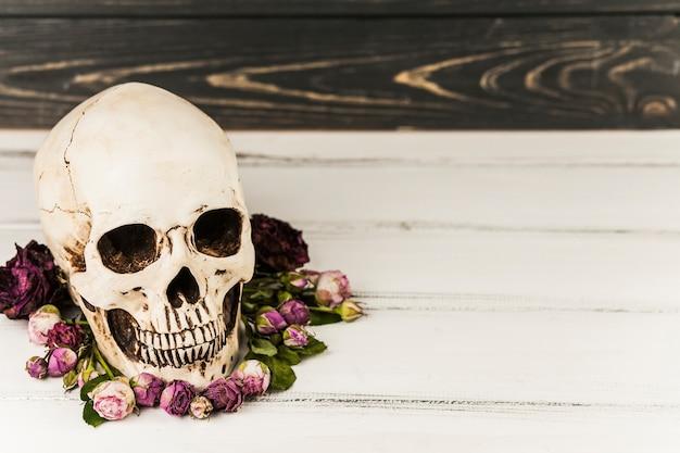 Crâne effrayant et fleurs lilas