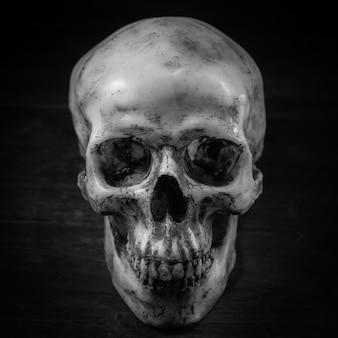 Crâne effrayant sur un sol sale.