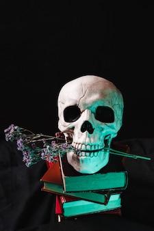Crâne avec fleurs et livres secs