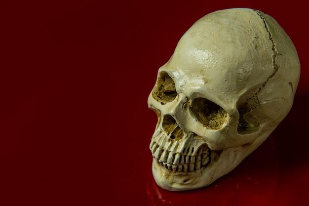 Le crâne sur fond abstrait brillant sur fond rouge.