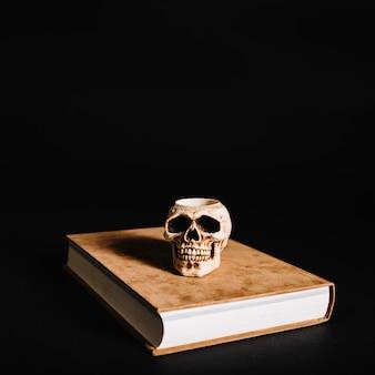 Crâne sur grand livre