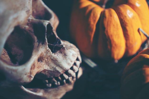 Crâne humain, concept d'halloween, image de filtre vintage