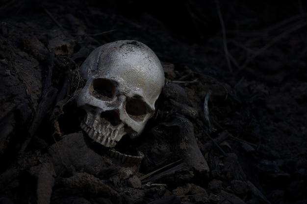 Crâne et os extraits d'une fosse dans un cimetière effrayant