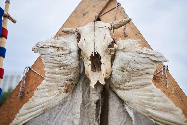 Crâne de vache au-dessus de la tente