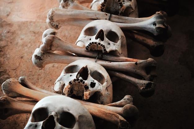 Crânes humains avec des os accrochés à un mur de béton.