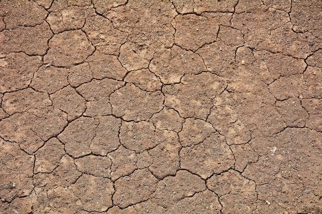 Craquer la texture du sol en été. du climat mondial