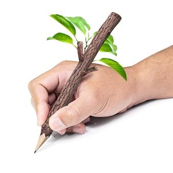 Crayon en bois à la main isolé sur blanc