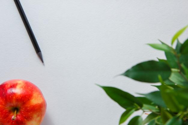 Un crayon avec pomme, plante sur fond blanc, vue de dessus. espace pour le texte