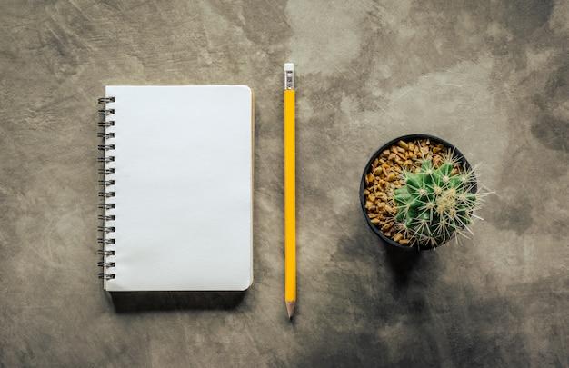 Crayon pour cahier et cactus sur panneau de ciment, vue de dessus.