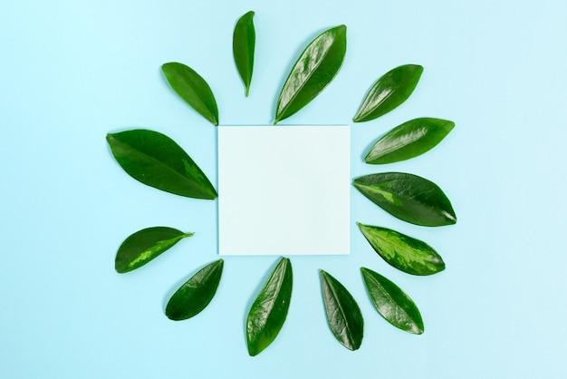 Création de contenu de blog sur le thème de la nature, prévention des pertes environnementales, affichage de matériaux renouvelables, création de produits renouvelables, matériaux organiques, planification de la conception du jardinage