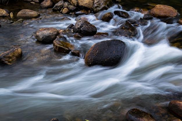 Creek falls et au-dessus d'un rocher en forêt