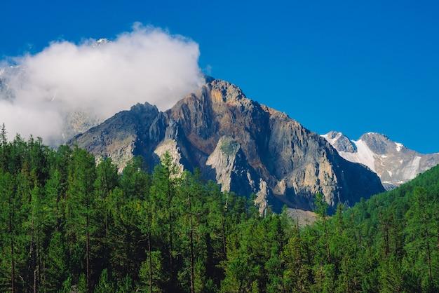 Crête rocheuse avec de la neige derrière la forêt verte et le ciel bleu