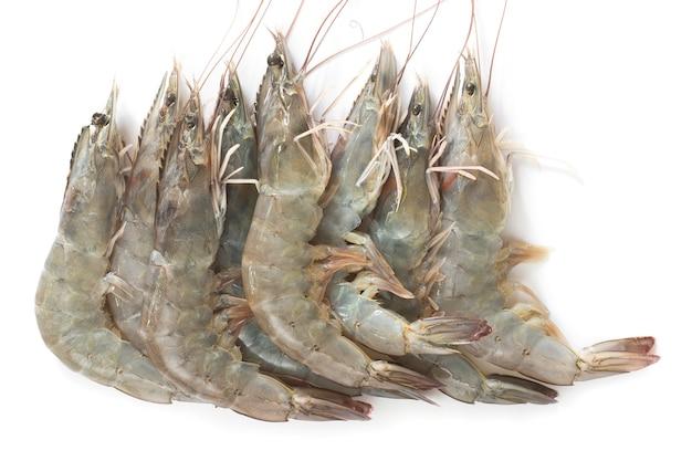 Crevettes blanches du pacifique isolé sur fond blanc
