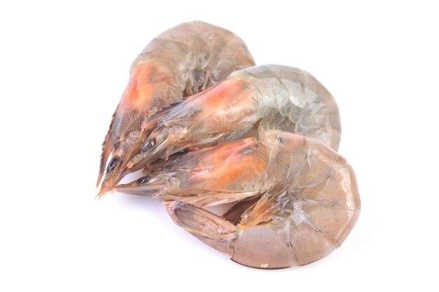 Crevettes sur fond blanc
