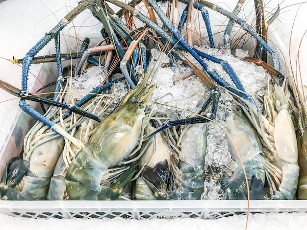 Crevettes fraîches au marché