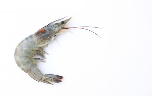 Crevettes fraîches crues sur fond blanc pour la modification des aliments