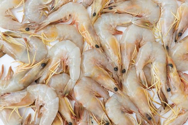 Crevettes fraîches crues, fond de crevettes