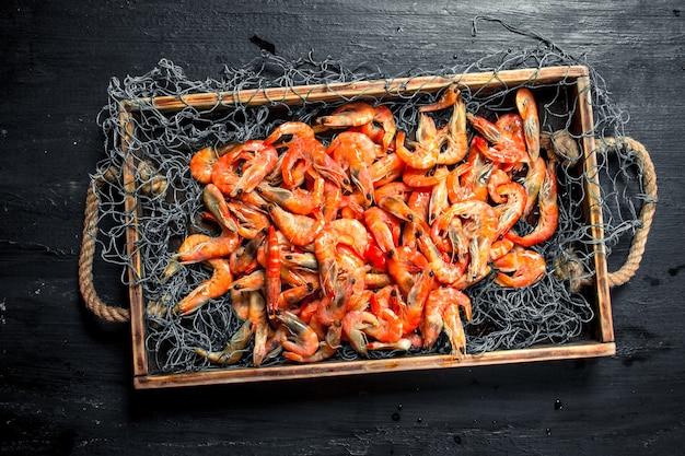 Crevettes fraîches dans un filet de pêche sur un plateau sur le tableau noir.