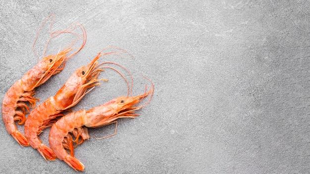 Crevettes fraîches vue de dessus avec copie