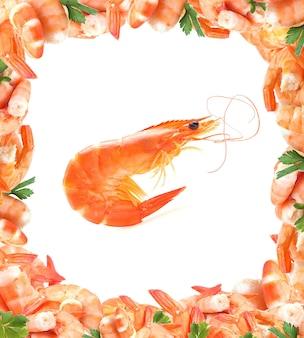 Crevettes fraîches