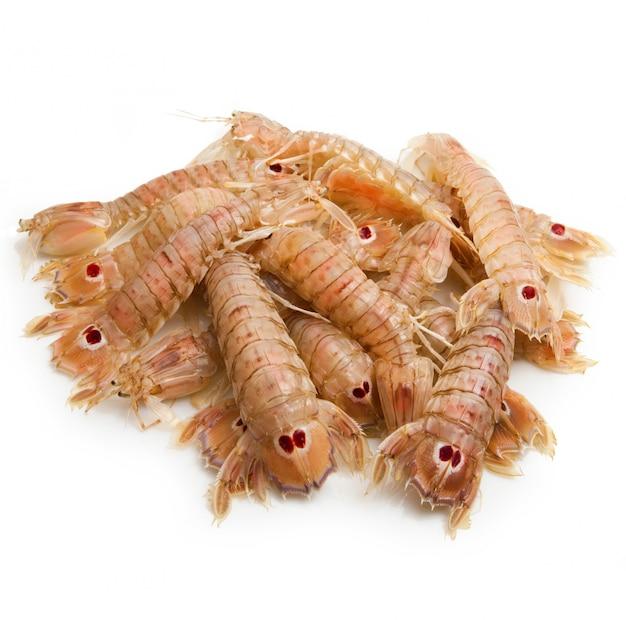Crevettes mantis