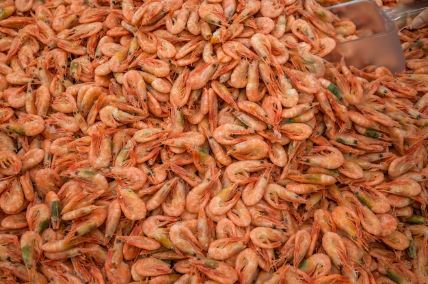 Crevettes de la mer noire dans un congélateur de supermarché