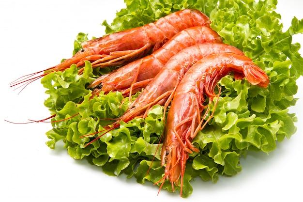 Crevettes sur une salade fraîche