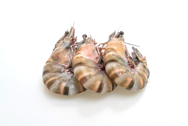 Crevettes tigrées fraîches ou crevettes isolées sur blanc